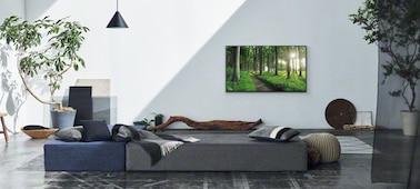 Snímek scény v obývacím pokoji znázorňující koncepci Živá výzdoba